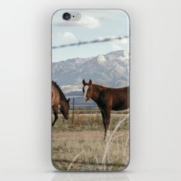 Ranch Horses near the Great Sand Dunes in Colorado iPhone Skin