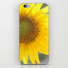 Bright and Sunshiny Day iPhone & iPod Skin