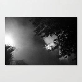 Window 01 Canvas Print