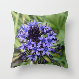Portuguese Squill Flower Throw Pillow
