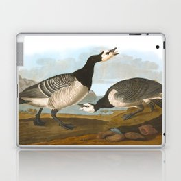 Barnacle Goose Laptop & iPad Skin