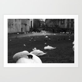 A view from Brugge Art Print