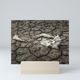 Animal Bones at Mud Cracked Ground Mini Art Print