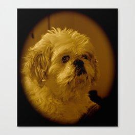"""""""Denali"""" - Lap Dog Canvas Print"""
