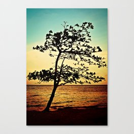Paradise Tree Canvas Print