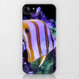 White and Yellow Butterfly Fish iPhone Case
