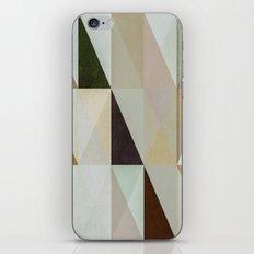 The Nordic Way XVI iPhone & iPod Skin