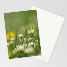 Daisy meadow Stationery Cards