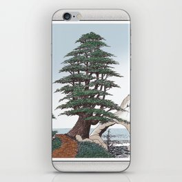CEDAR OF LEBANON PEN AND PENCIL DRAWING iPhone Skin