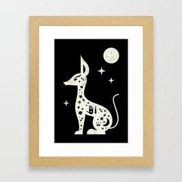 Jackal White Framed Art Print