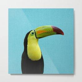 Toucan Bird - Blue Metal Print