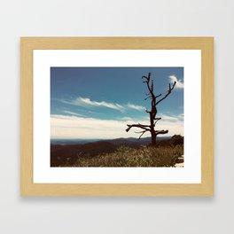 The Cool Dancer Tree Framed Art Print