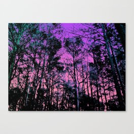Forest (Sunset) Canvas Print