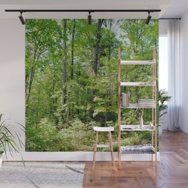 sunlight in the woods Wall Mural