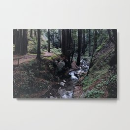 Big Sur Forest Metal Print