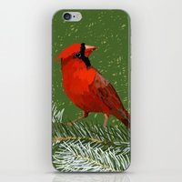 cardinal iPhone & iPod Skins featuring Cardinal by Janko Illustration