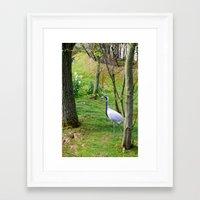 crane Framed Art Prints featuring Crane. by Samuel Bridgeman