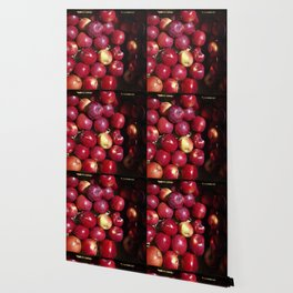 Apple Harvest! Wallpaper