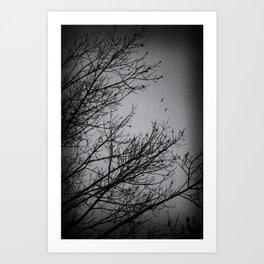Winter Noir Art Print