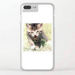 Katze, Cat Clear iPhone Case