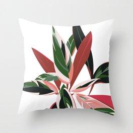 Calathea Stromanthe Triostar - House plants Throw Pillow