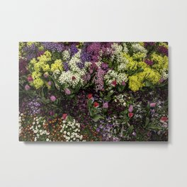 Colorful array of spring flowers Metal Print