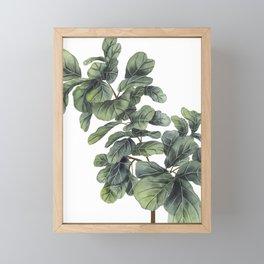 Fiddle Leaf Fig Framed Mini Art Print