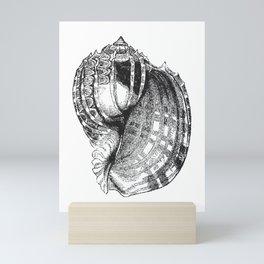 Seashell | Sea Shell | Conch Shell | Black and White | Mini Art Print