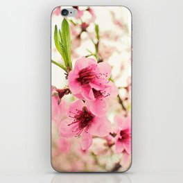 Spring is in the air! iPhone Skin