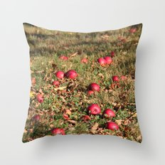 Resting Places Throw Pillow