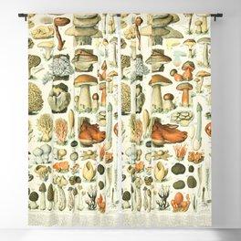 Adolphe Millot champignon french vintage 1800s Blackout Curtain