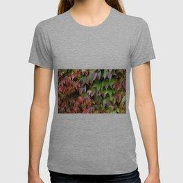 Virginia Creeper T-shirt