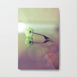 Are you looking for something? Metal Print
