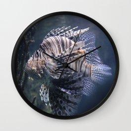 sea fish Wall Clock