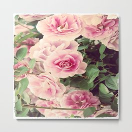 SEPTEMBER ROSE Metal Print