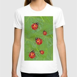 RED LADY BUGS ON GREEN LEAVES DESIGN ART T-shirt