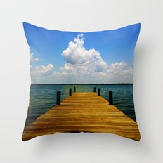 FL Throw Pillow