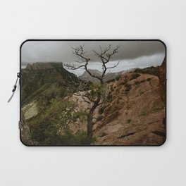 Colorful Mountaintop View with Withered Tree - Big Bend Laptop Sleeve