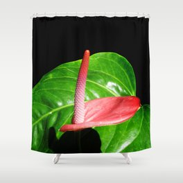 Calla and Leaf Shower Curtain