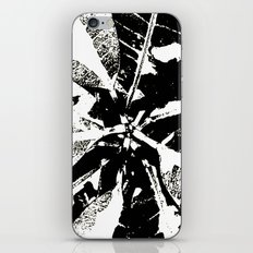 Catapult iPhone & iPod Skin