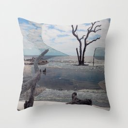 Hunting Island II Throw Pillow