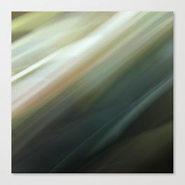 Motion Blur Series: Number Two Canvas Print