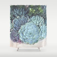 Succulent Container Shower Curtain