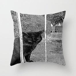 Street Cat IV Throw Pillow