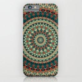 Mandala 585 iPhone Case