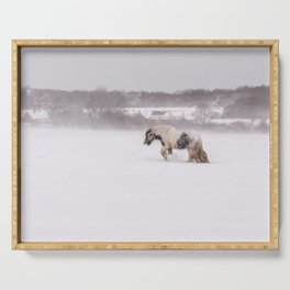Lonely horse in the snow Serving Tray