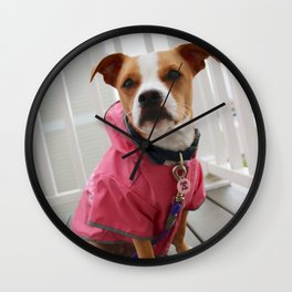 Dog in Raincoat Wall Clock