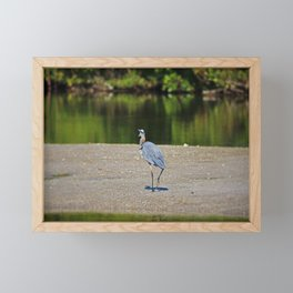 Where Do You Think You're Going Framed Mini Art Print