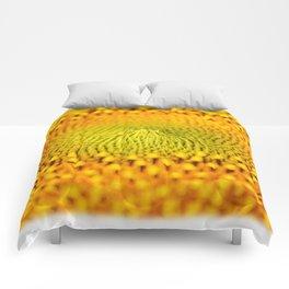 Little bet of sun flower..... Comforters