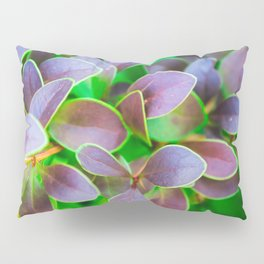 Vibrant green and purple leaves Pillow Sham